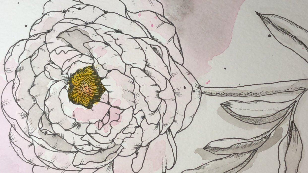 Modern Watercolor Peony with Isa - student project