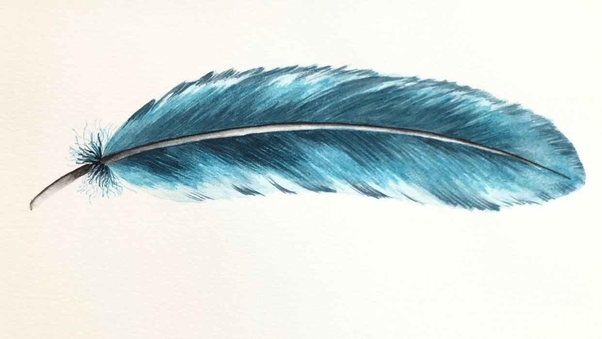 Painting Feathers - student project