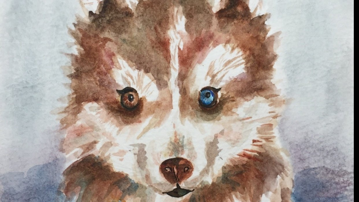 Watercolor dog - student project