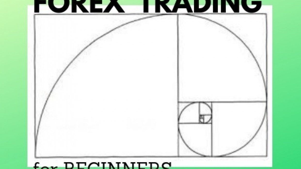 FOREX TRADING FOR BEGINNERS - student project