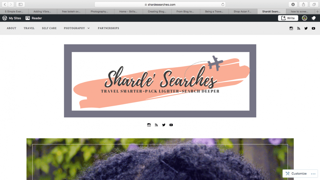 Sharde' Searches - student project