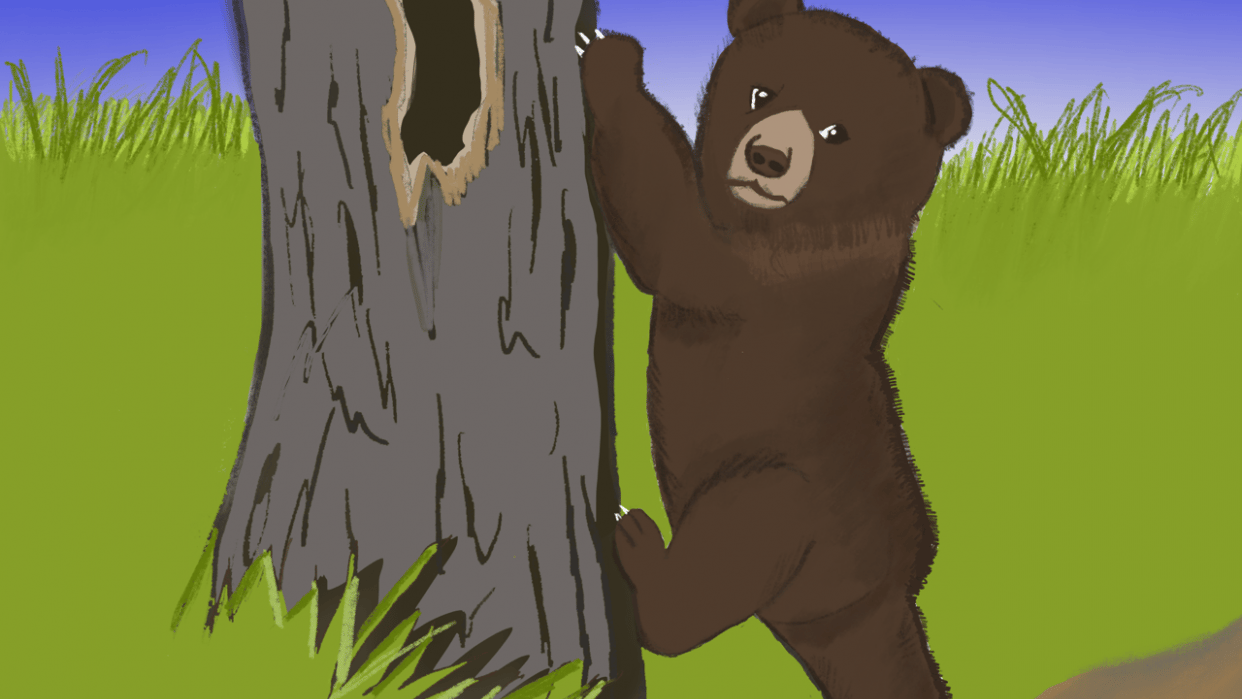 Brown Cub - student project