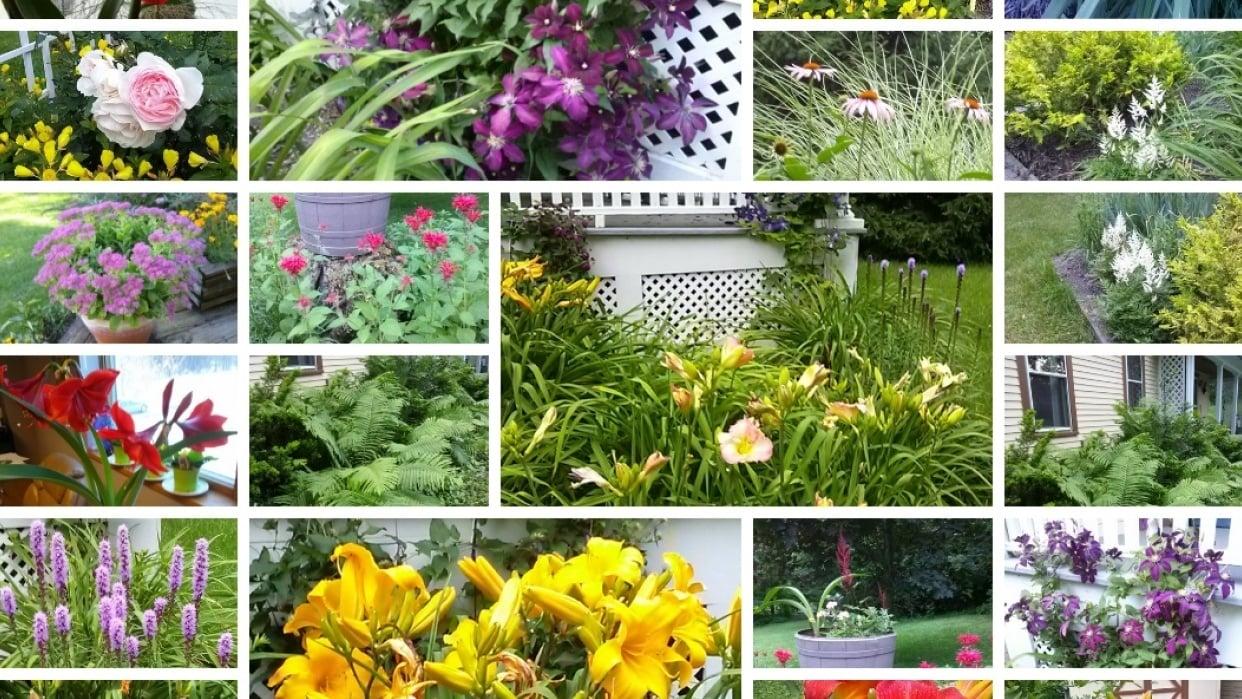 Margaret's Garden - student project