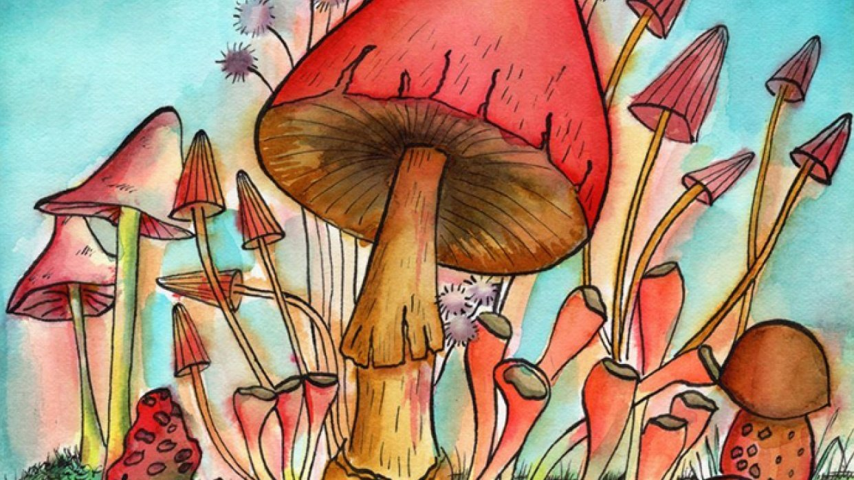 Mushrooms with Watercolors and Ink - student project