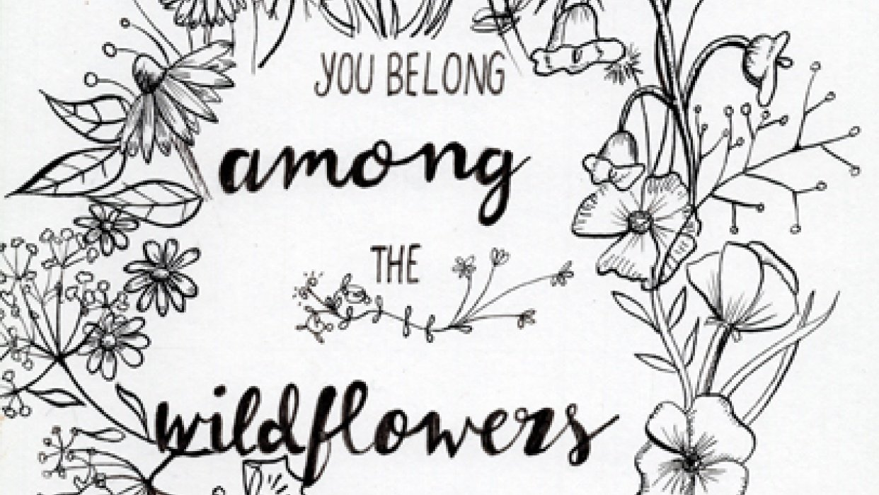 Wildflowers - student project