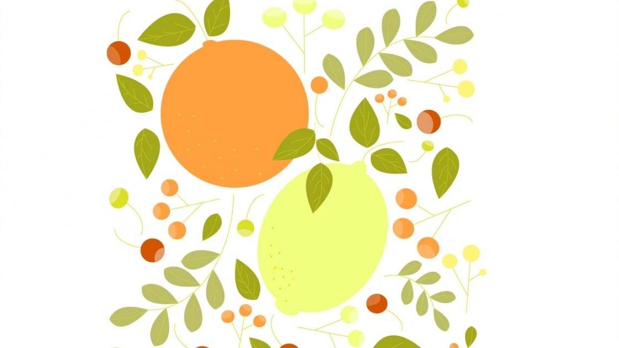 Citrus Pattern - student project