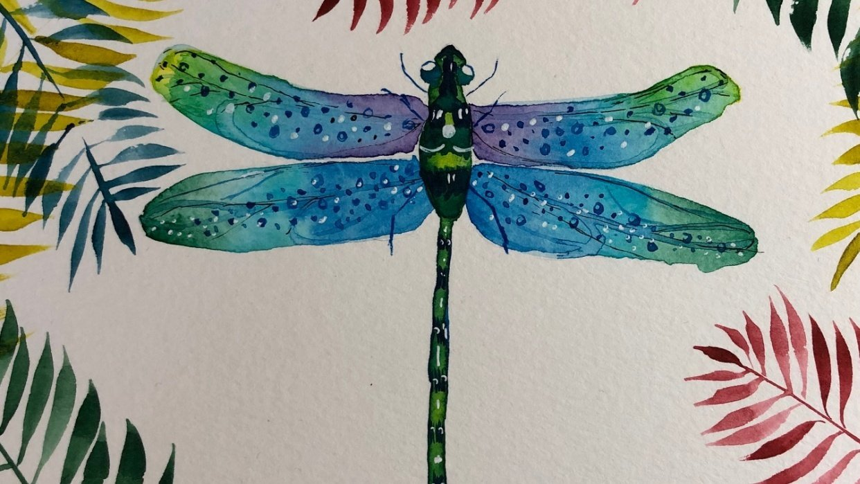 Dragonfly with Irina - student project