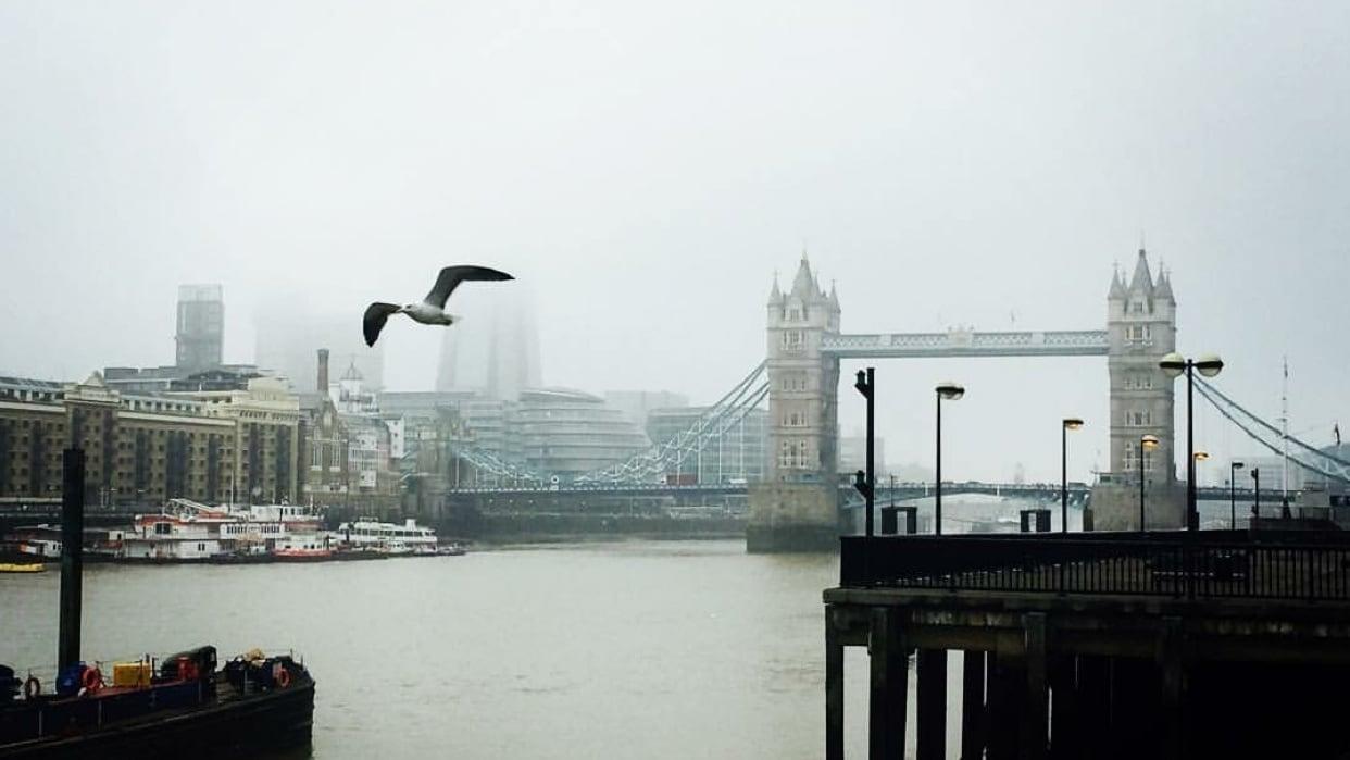London Fog - student project