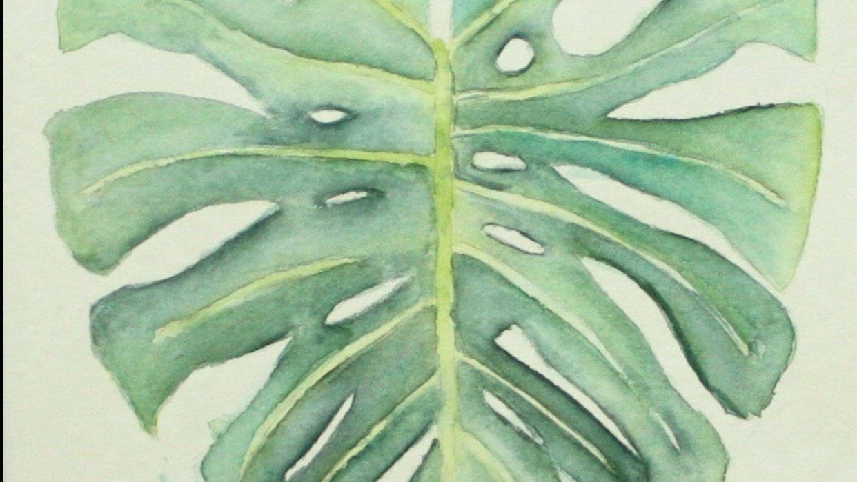Joyce's Monstera Leaf - student project
