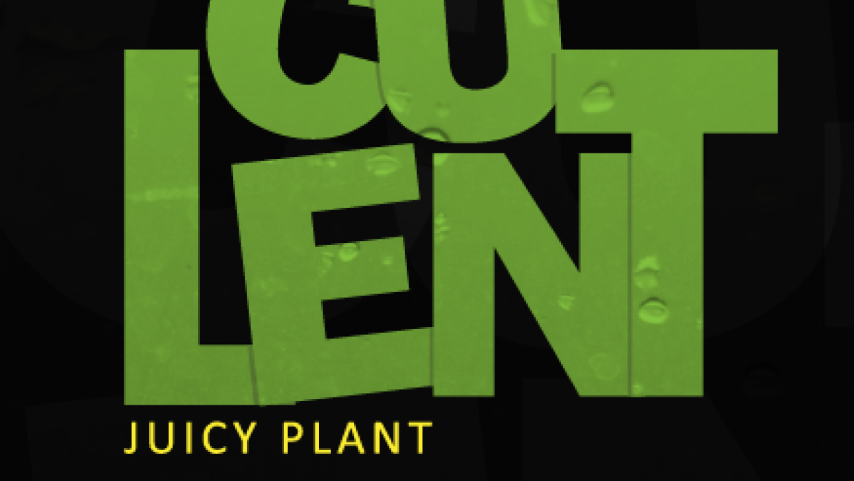 Succulent Typography - student project