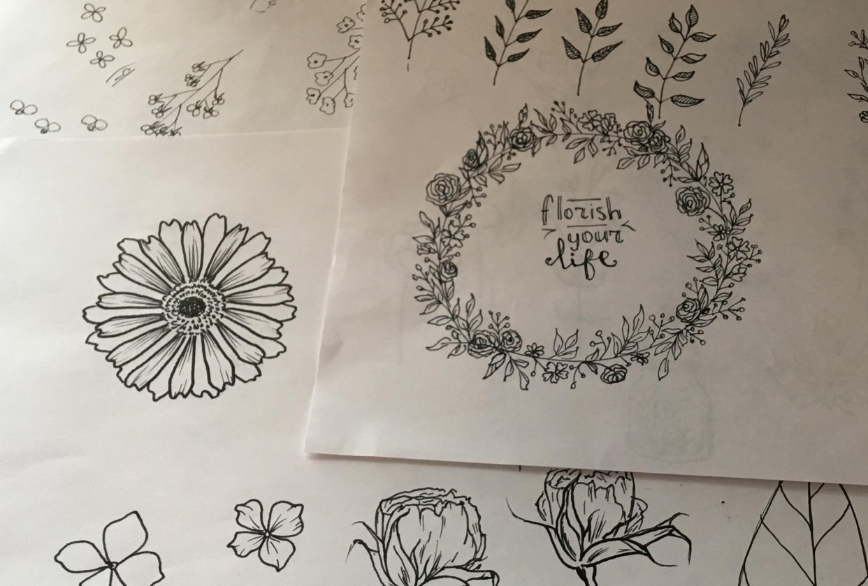 Botanical line drowing first steps - student project