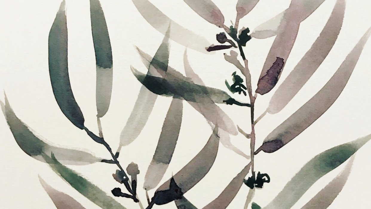 Watercolor Botanicals  with Ink Details - student project