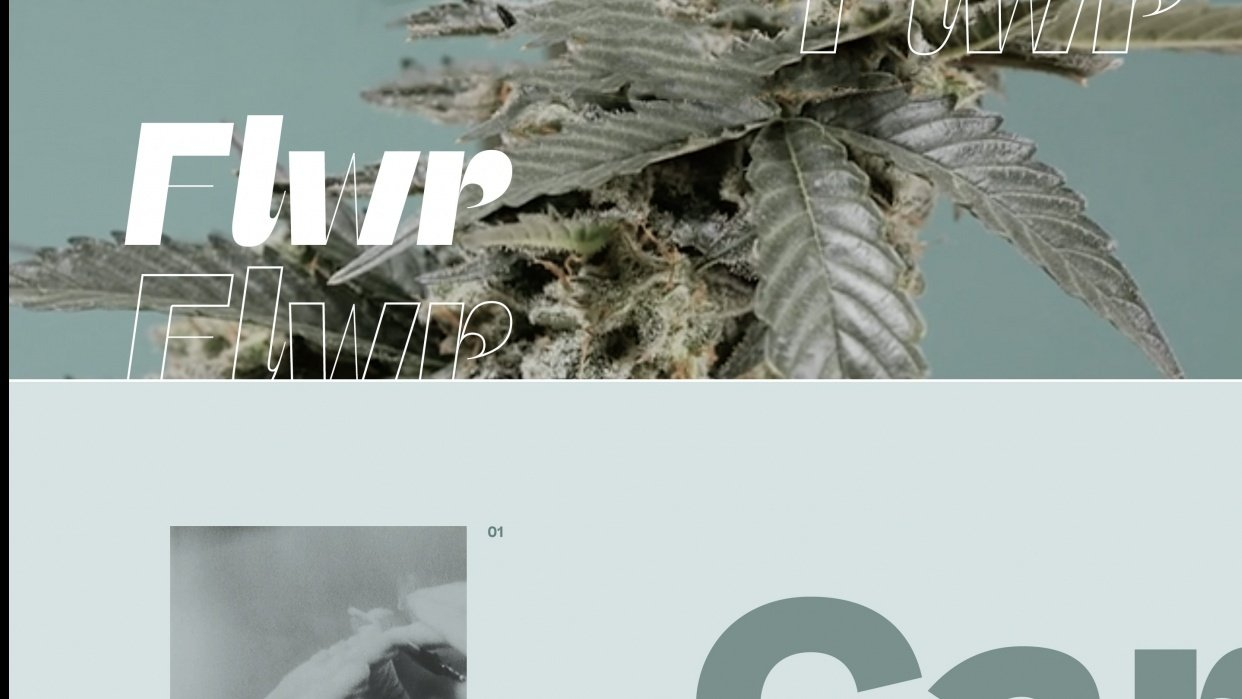 ReadyMag in 60 minutes: Design and publish an edgy online magazine - student project