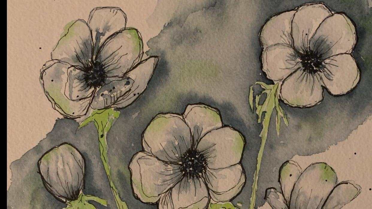 Anemones - Florals - student project