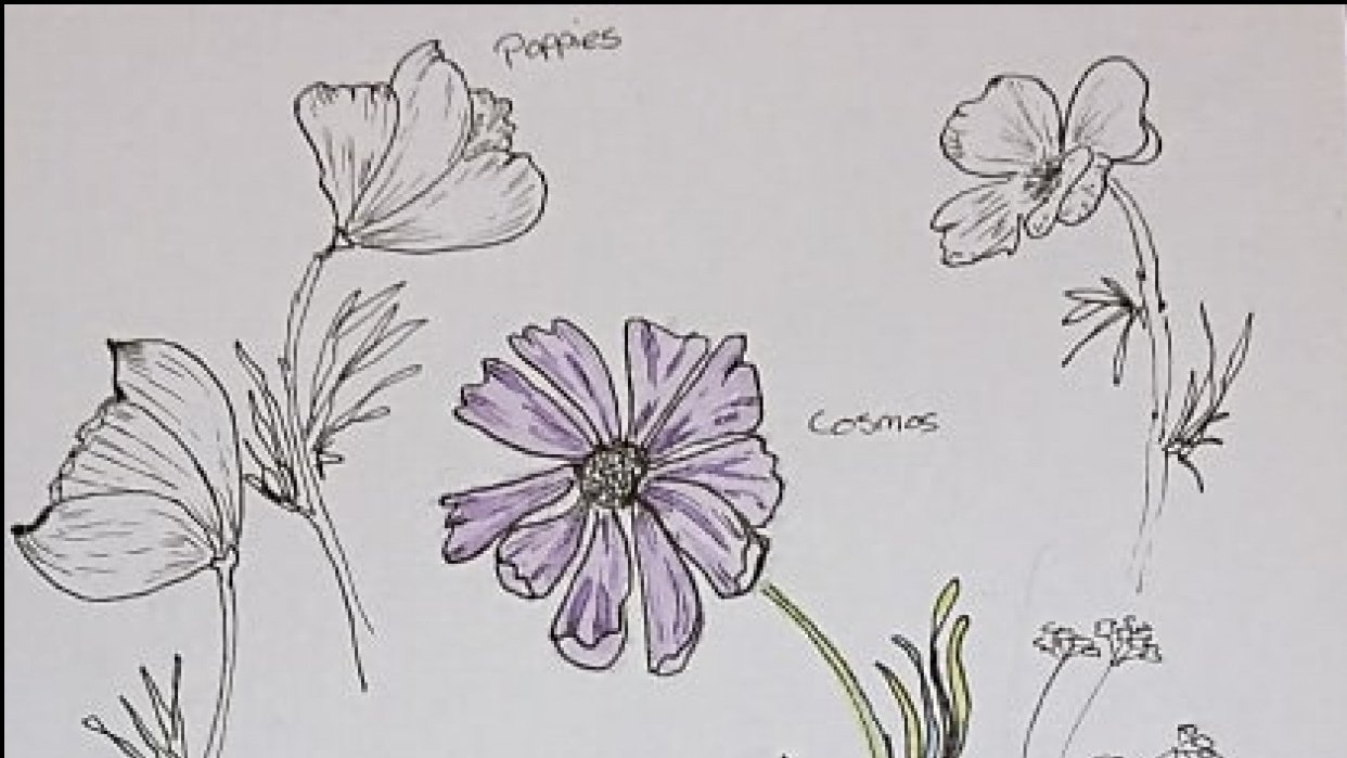 I can draw the prettiest flowers! - student project