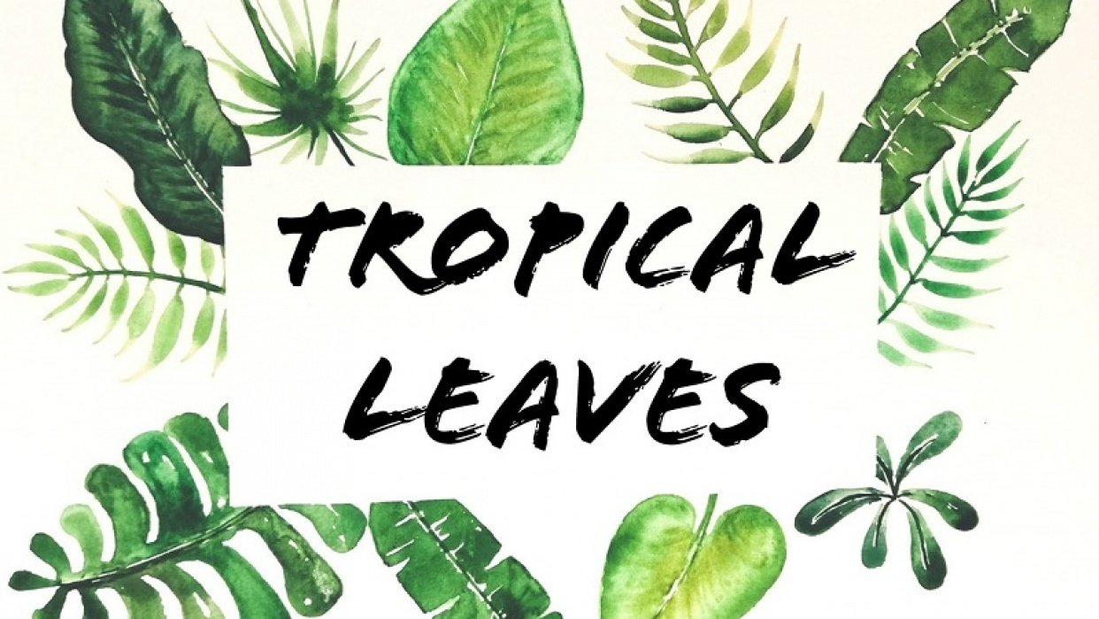 my tropical leaves project - student project