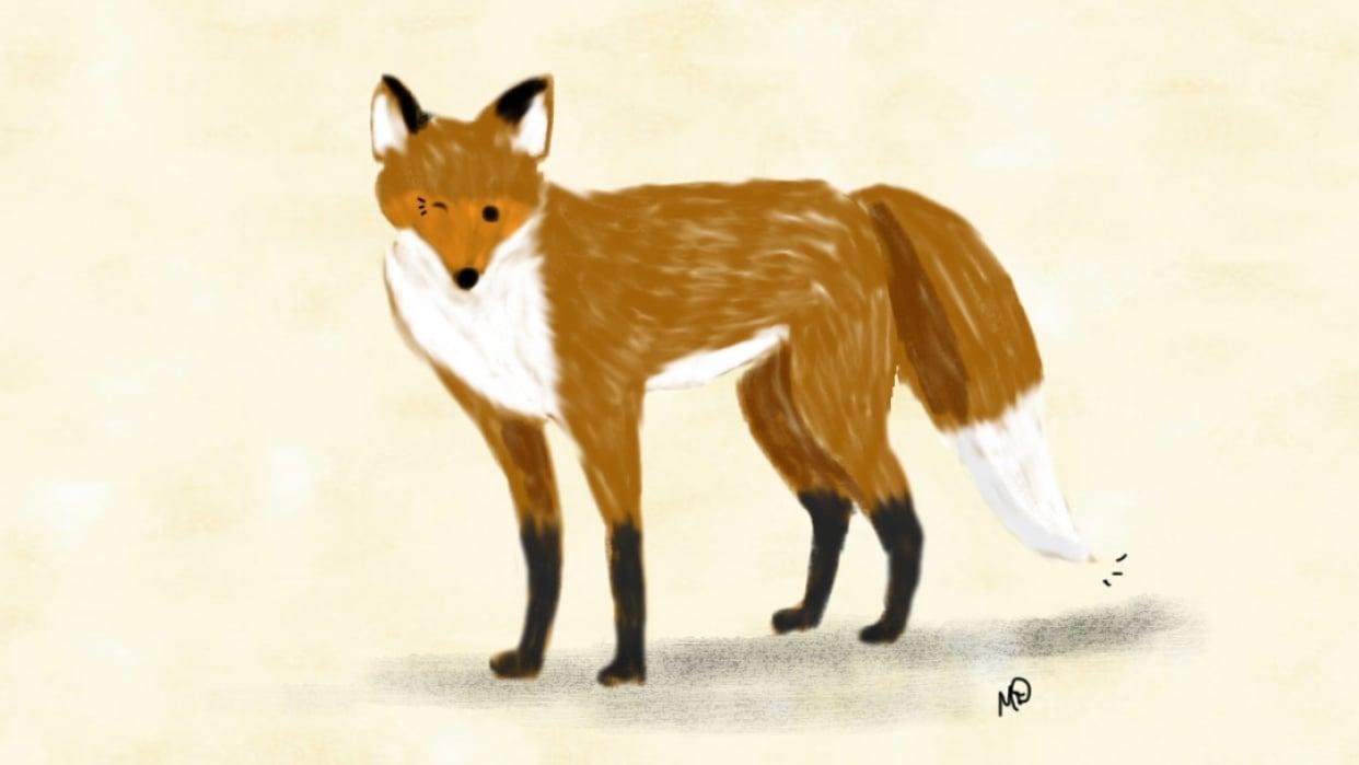 Winking Fox - student project