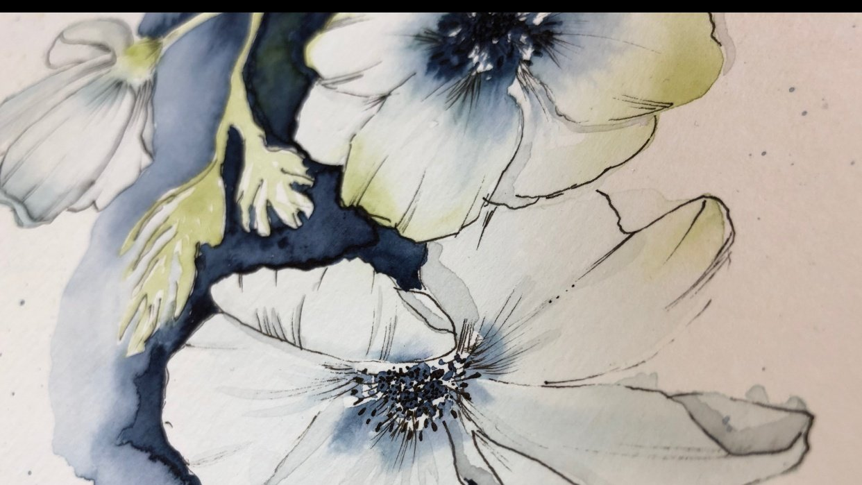 Anemones with Camilla - student project