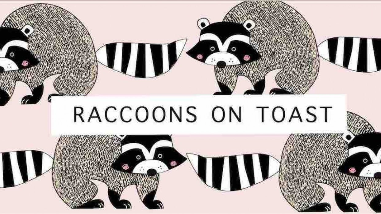 Raccoons on Toast! - student project
