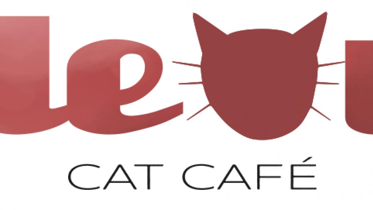 Cat Café - student project