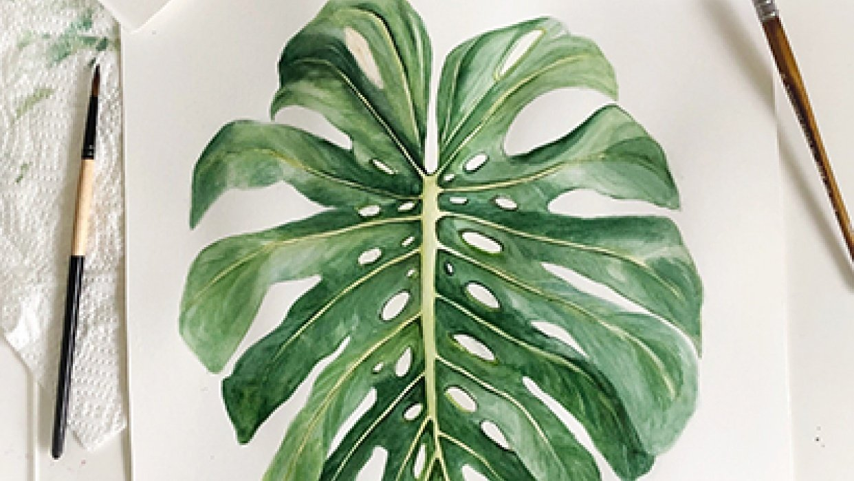 Monstera Leaf - student project