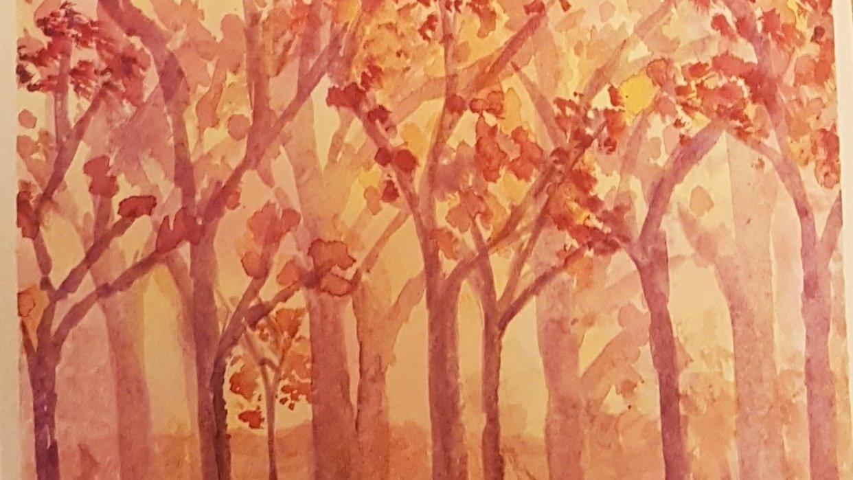 Autumn forest - student project