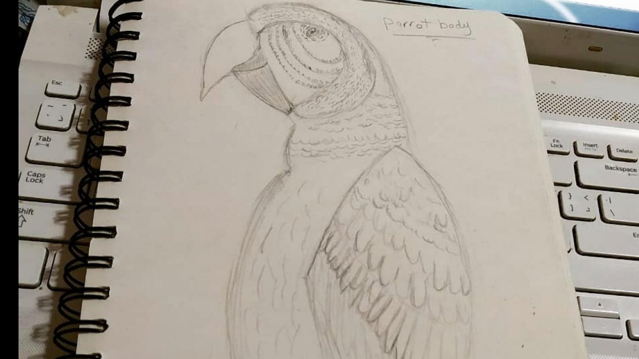 Parrot - student project