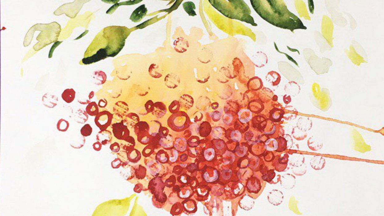 Watercolor Secrets: Seven Tips to Level-Up your Art - student project