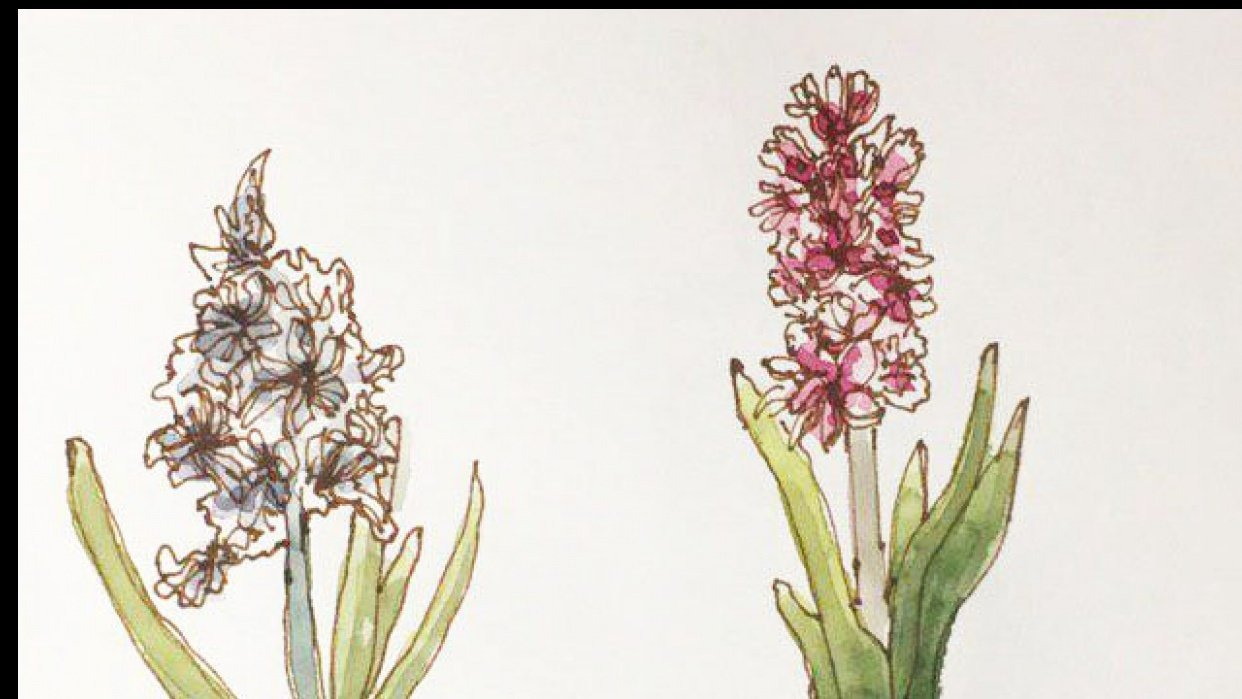 Spring Flowers in Watercolor: explore different Watercolor Styles - student project