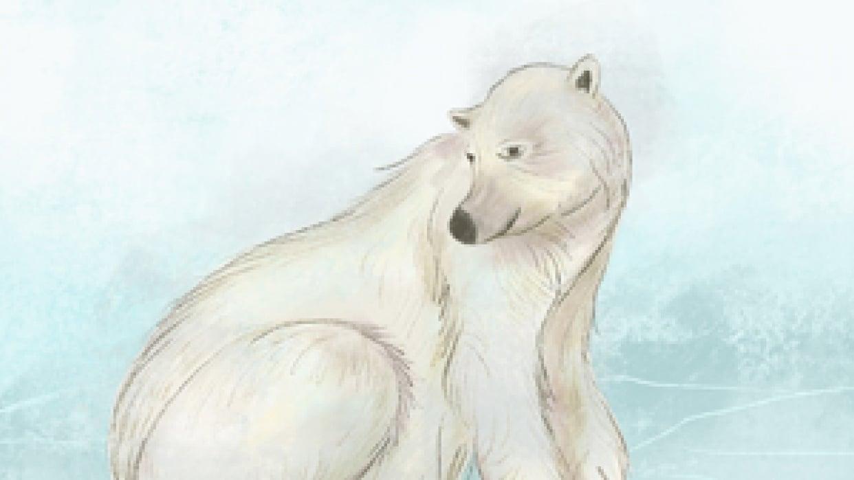 A Sweet Polar Bear - student project