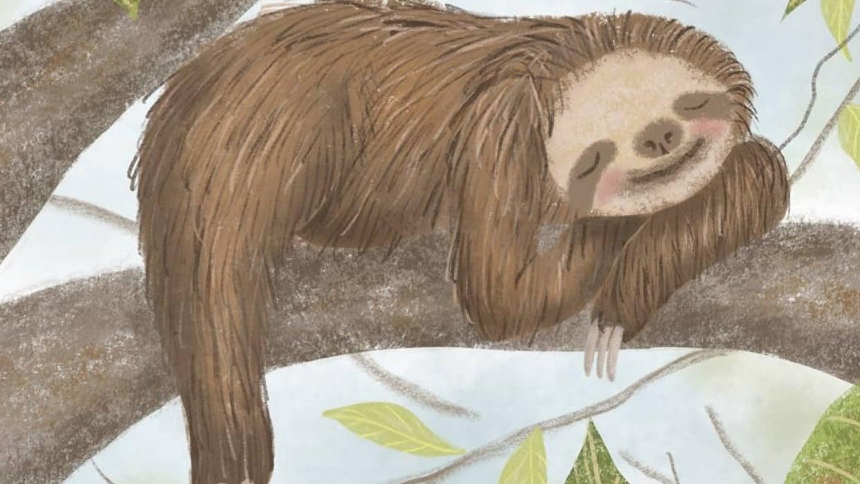 Sleepy Little Sloth - student project