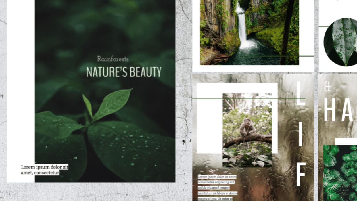 Nature's Beauty- GDproject - student project