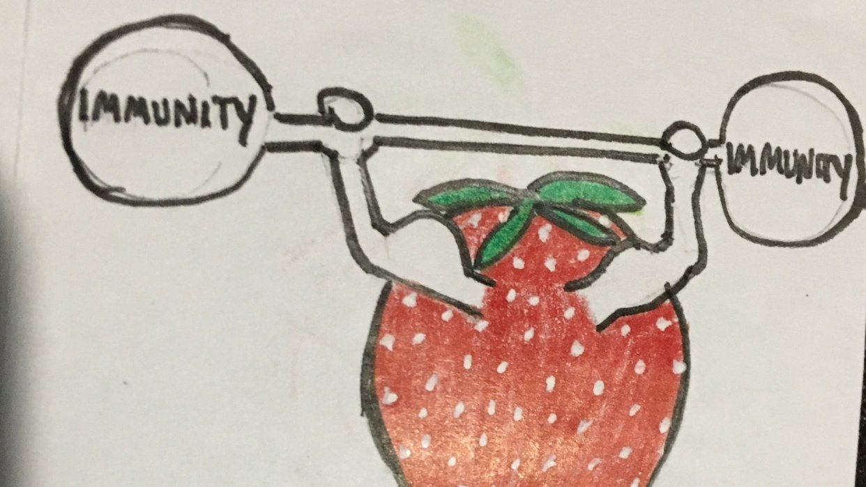 What's So Special About Strawberries - student project