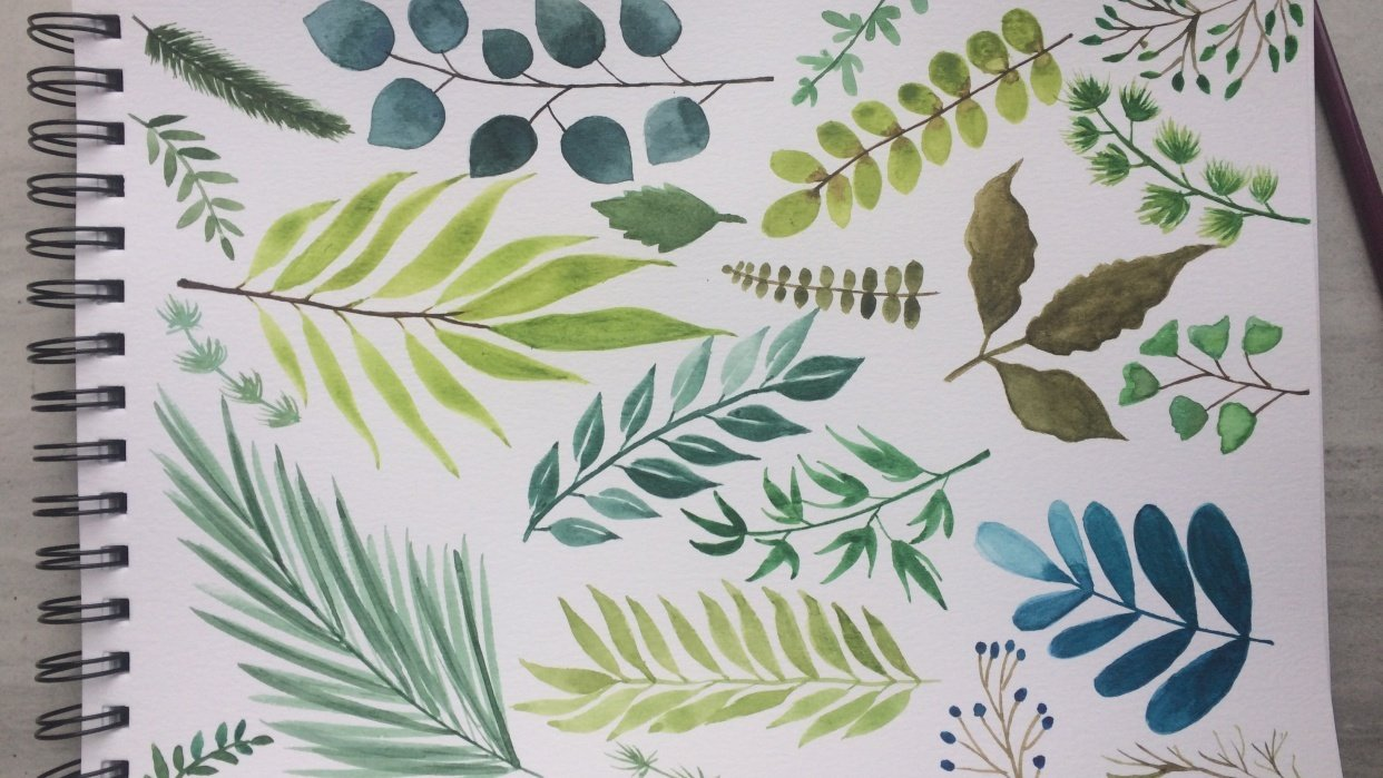 Assorted Leaves - student project