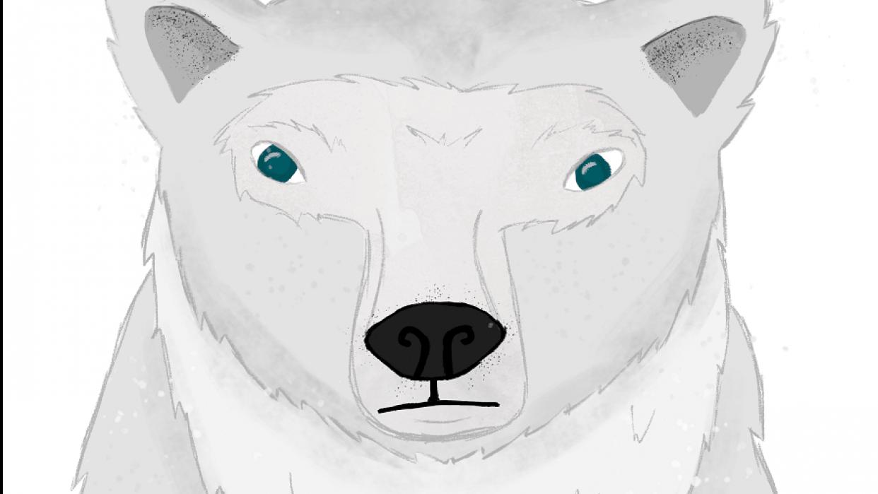 Polar Bear Illustration (I Wish It Was My Pet!) - student project