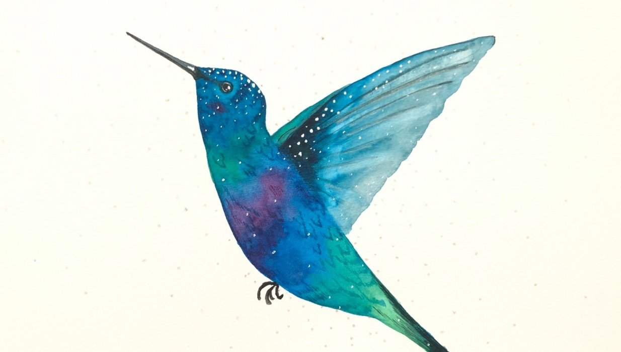 Shimmery Hummingbird - student project