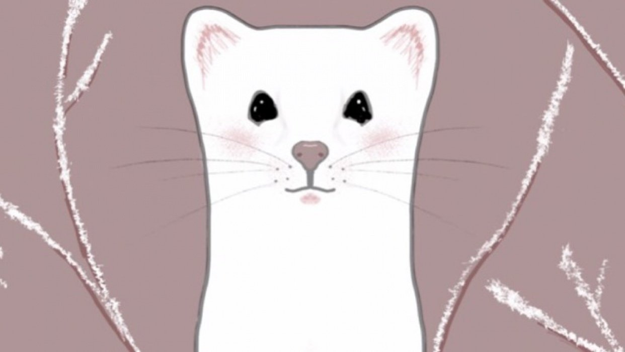 Ermine - student project