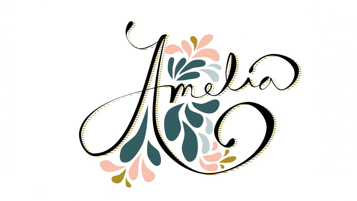 Amelia - student project