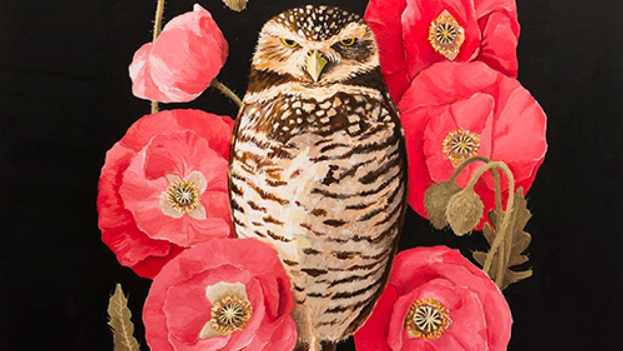 Burrowing Owl - student project