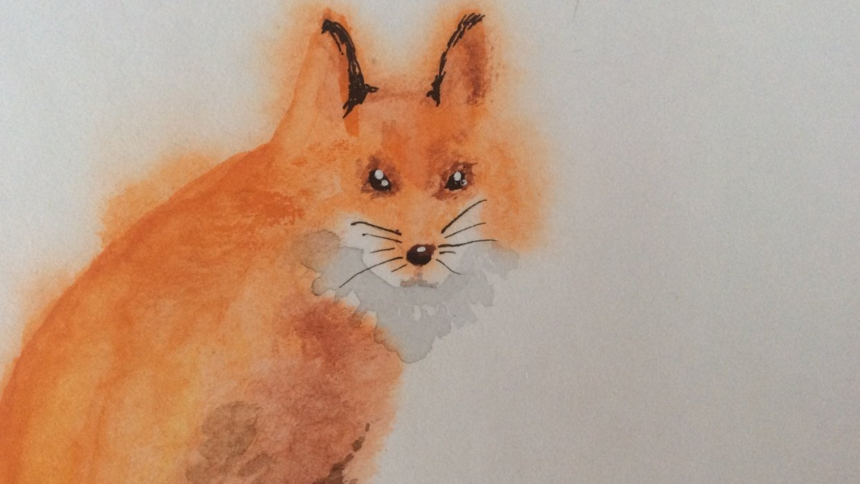 Struggling foxes - student project