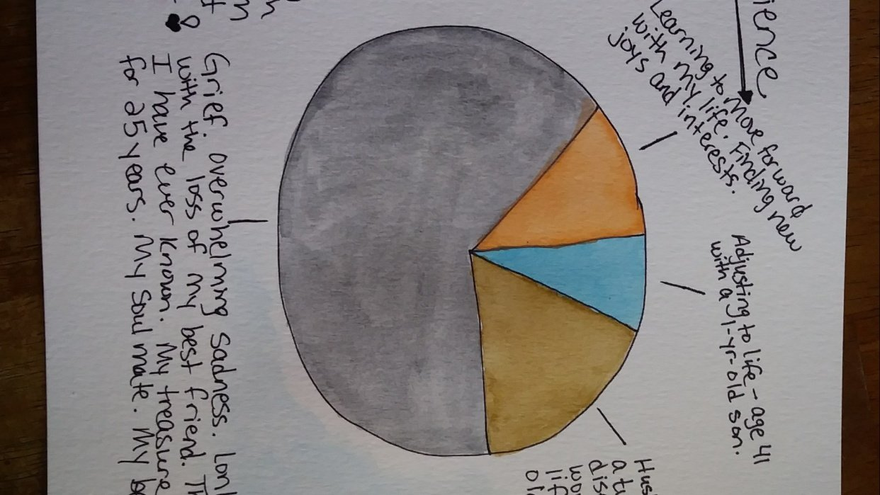 2018 Resilience Pie Chart - student project