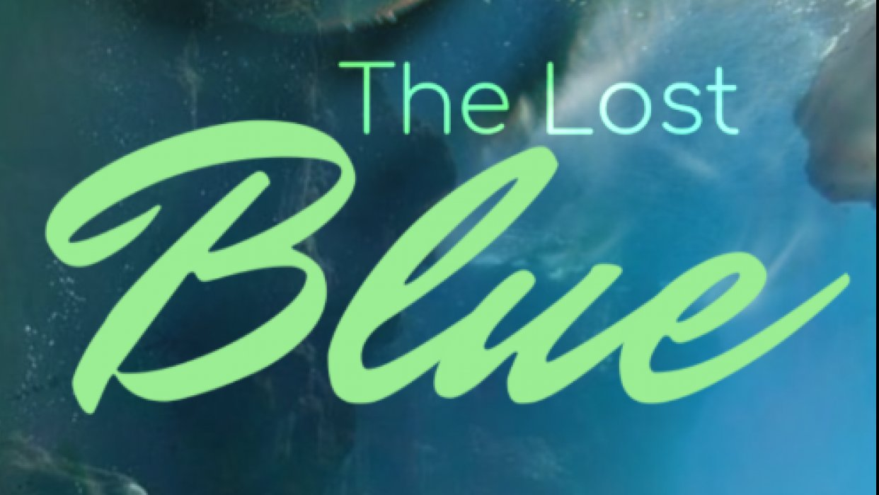 The Lost Blue - student project