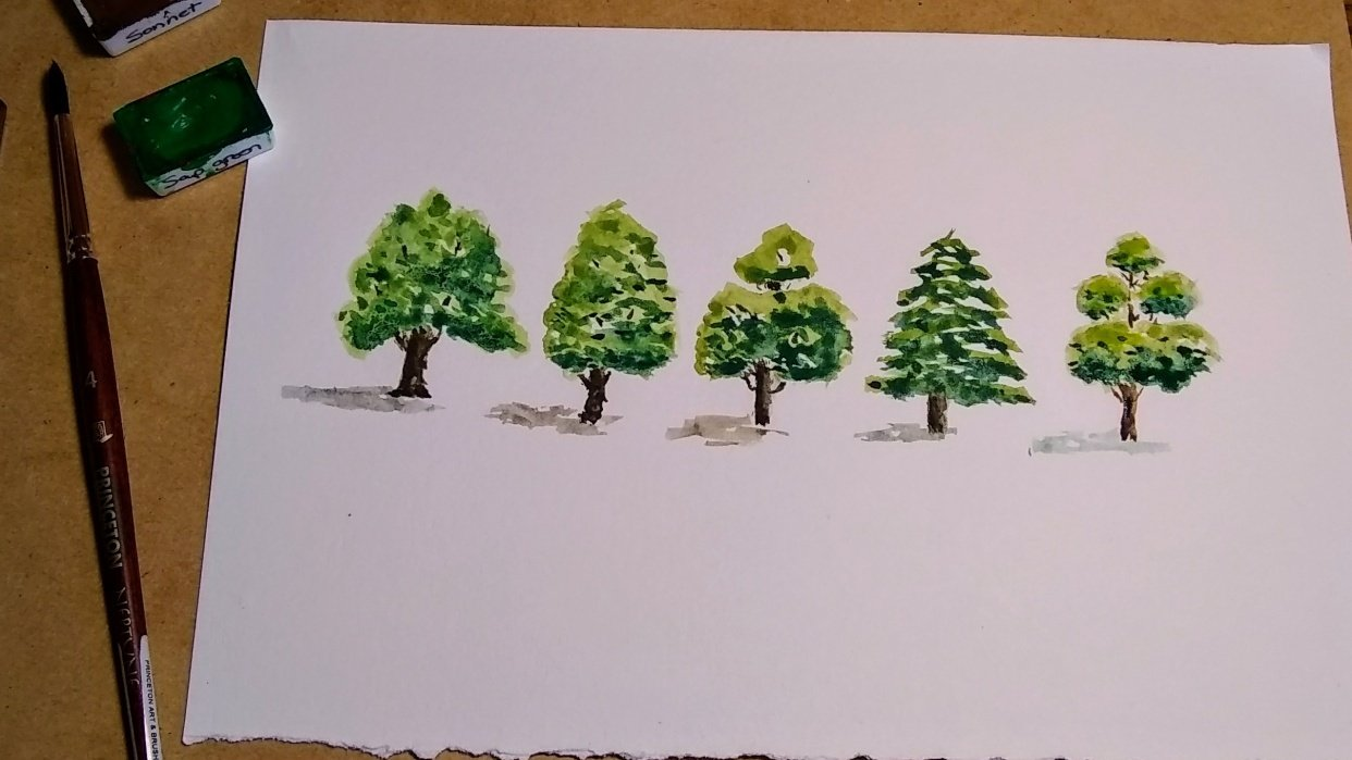 Tree shapes - student project