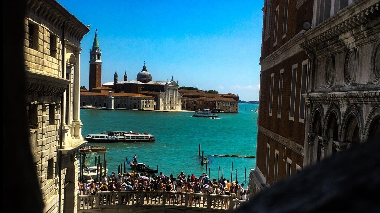Summer Daze at Venice - student project