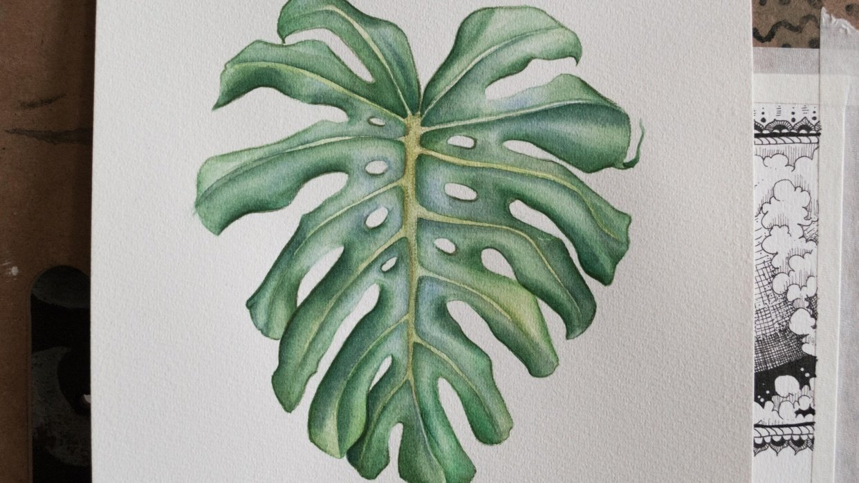 Botanical Watercolor - Monstera Leaf - student project