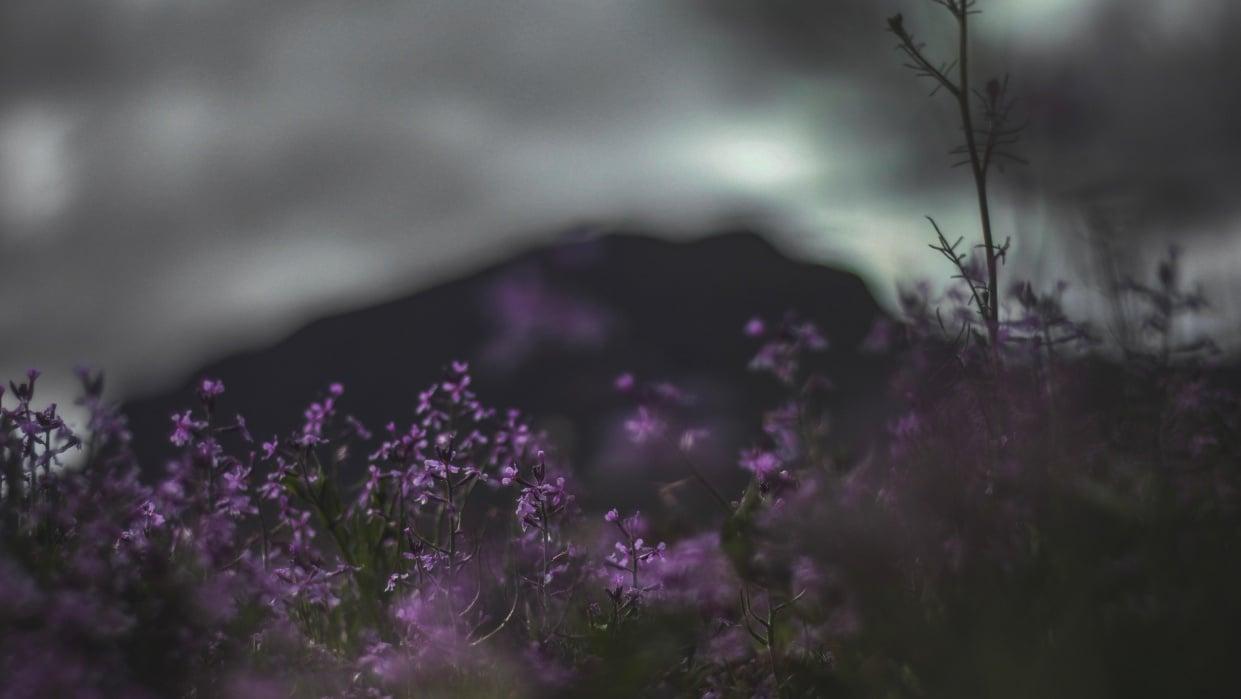 Landscape Photo Edit - student project