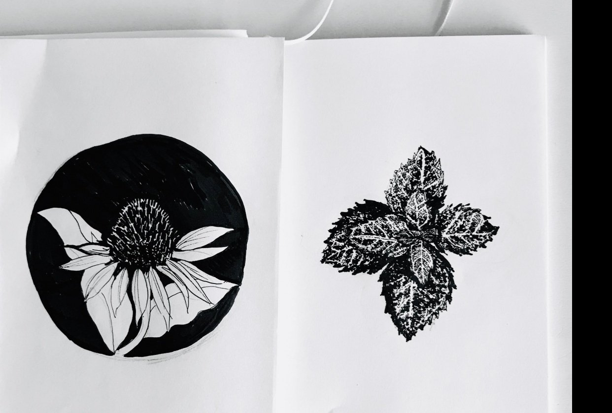 Drawing with Ink Pen - student project