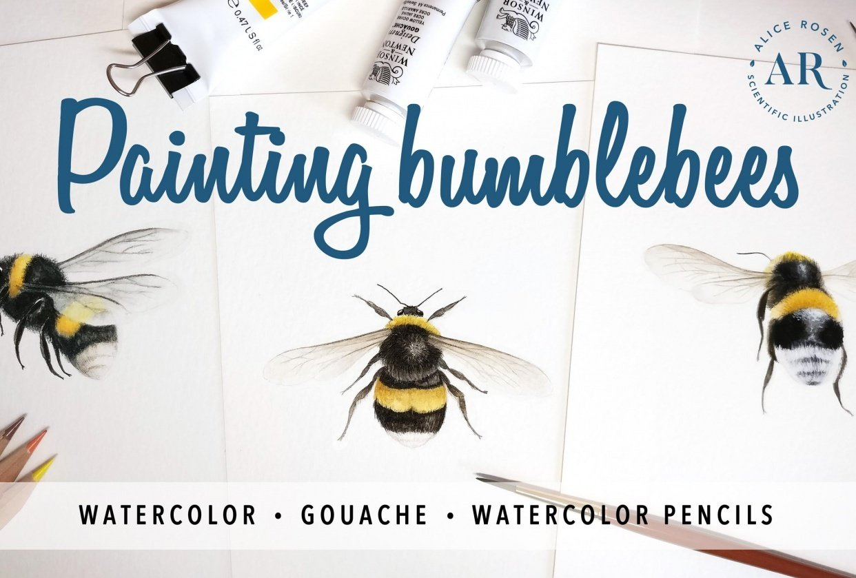 [PUBLISHED] Painting Bees in Watercolor, Gouache & Watercolor Pencils - student project