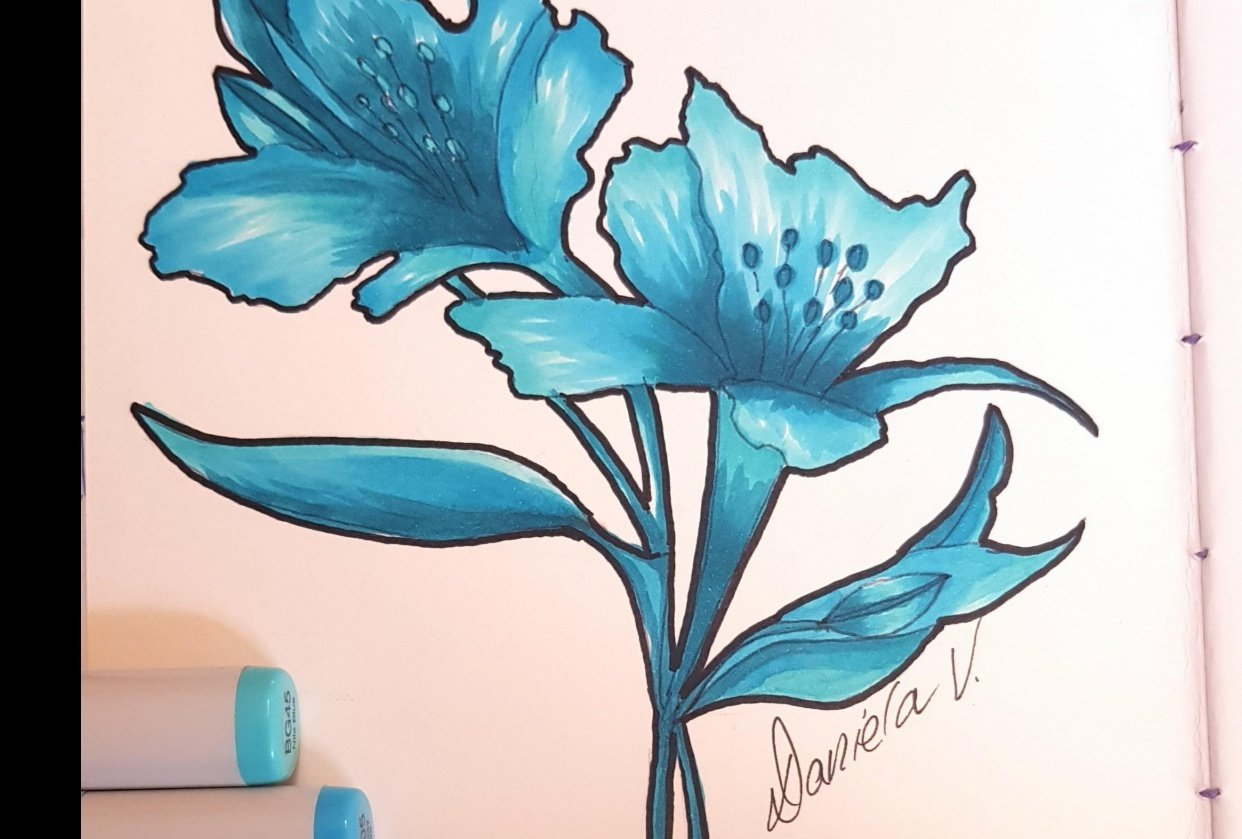 My 3-Marker Flower Illustration - student project