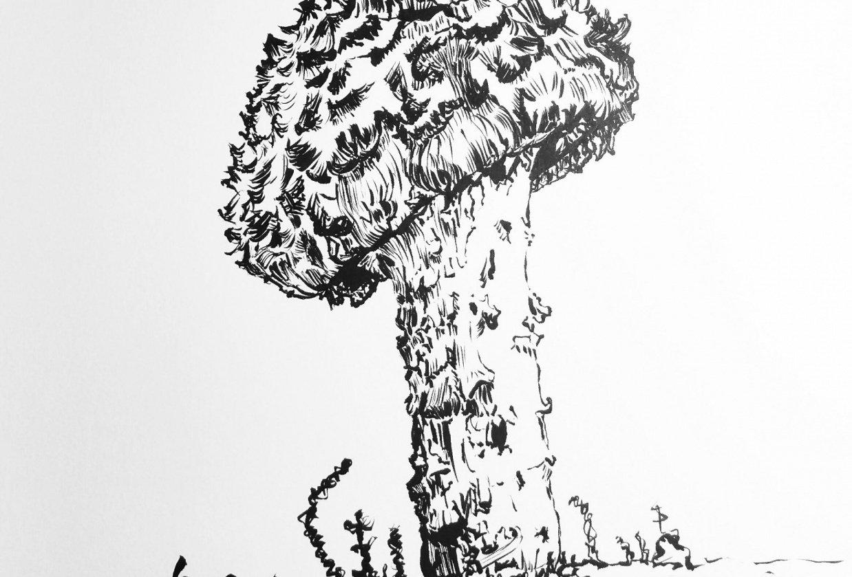Shock-headed Boletus Mushroom - student project